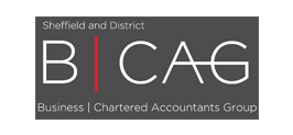 Business Chartered Accountants Group