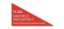Young Chartered Accountants Group